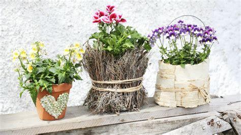 Maceteros originales: todo para tus plantas | WESTWING