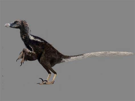 magia digital: velociraptor con plumas