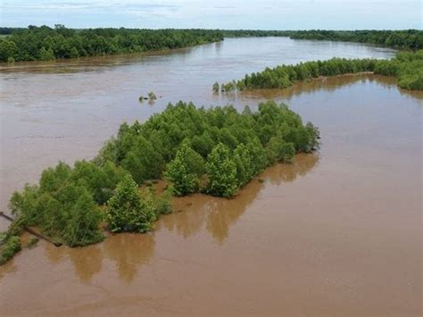 Major flooding now predicted for some Central Louisiana areas