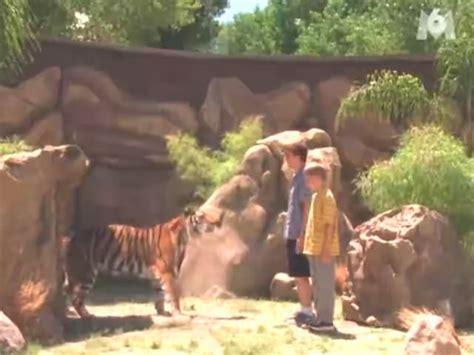 Malcolm Temporada 4 Capítulo 1   El Zoológico  Español ...