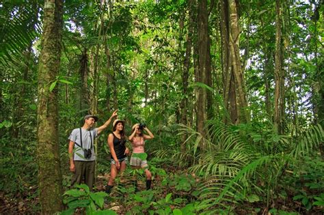 Manatee Amazon Explorer | Ecuador Amazon Rainforest