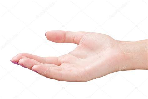 mano abierta — Foto de stock  doroshin #6902761