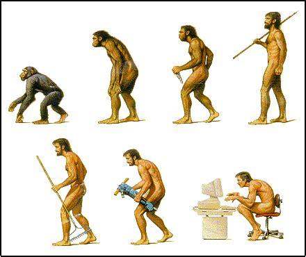 Manual del científico: La ¿evolución? del ser humano...