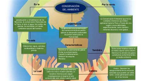 Mapa conceptual c. ambiente i
