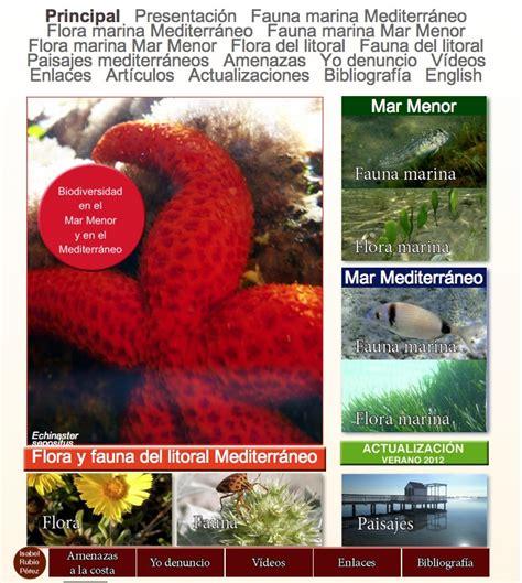 mar menor mar mayor: Fauna del Mediterráneo