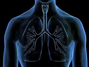 Marcadores tumorales del cáncer de pulmón en Megalab ...