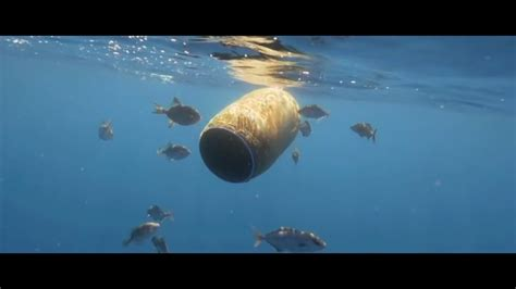 Marine pollution, 1st theme of the 2017 #OurOcean ...