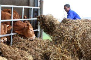 Más de 7.000 agricultores recibirán desde mañana unos 13,6 ...