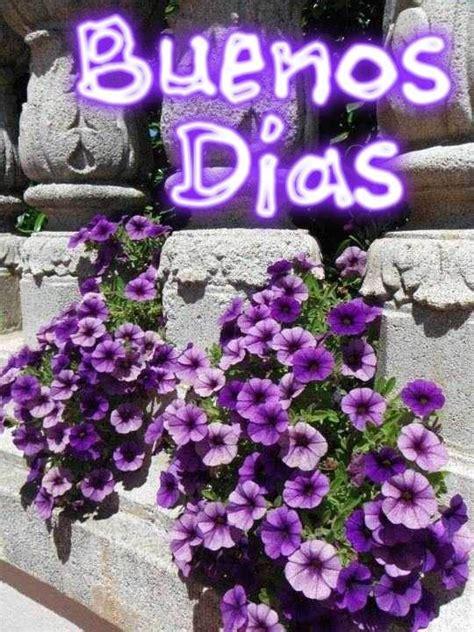 Más gifs animados con humor   Saludos de buenos dias ...