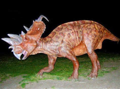 Massive rare dinosaur skull unearthed in Canada   The ...