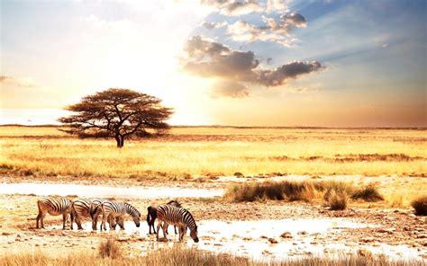 Master's Men Africa – The Call for Kenya & Africa