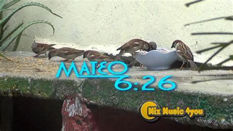 MATEO 6 26 Si Dios alimenta a las aves que no hará por ...