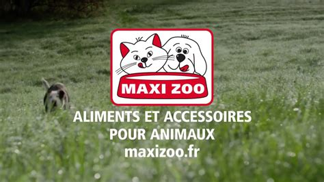 MAXI ZOO sur 6Play   YouTube