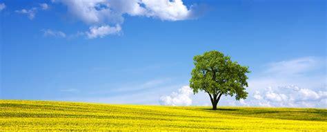 Medio Ambiente Archivos   Nueva ISO 14001