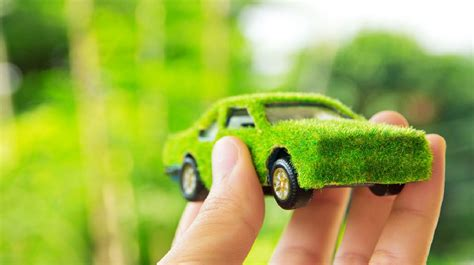 Medio ambiente: CONSEJOS que te ayudarán a cuidarlo desde ...