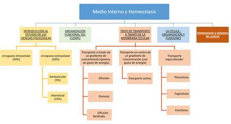 Medio Interno y Homeostasis   Fisiología