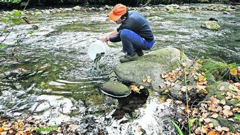 Medio Natural repuebla los ríos riojanos con 182.200 ...
