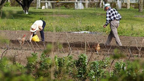 Medio Rural da luz verde al trabajo de los agricultores ...