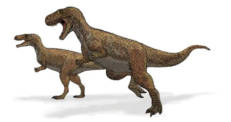 Megalosaurus – Wikipedia