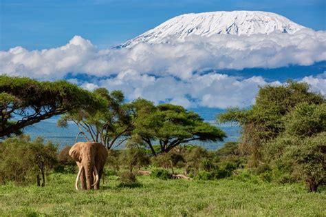 Mejor época para viajar a Kenia [ 2020 ]   Tarifas Error