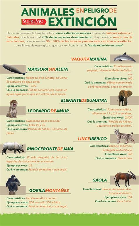 Mejores 14 imágenes de Fauna de nuestro paìs en Pinterest ...