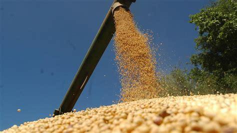 Mejoró el precio de la soja en Rosario y se vendieron 700 ...