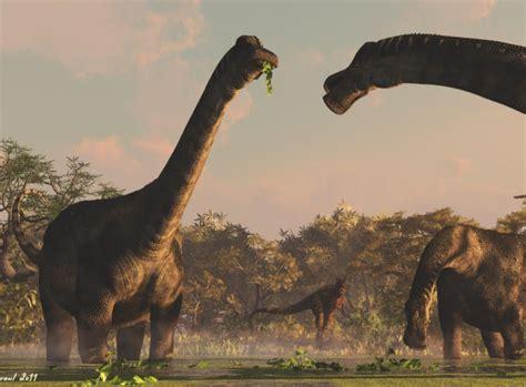 Mesozoico 05 | Amigos de los Dinosaurios y la Paleontología