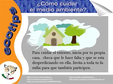 MEXIFAUNA: Ecotips ¿Cómo cuidar el medio ambiente?