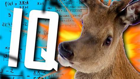 MI COEFICIENTE INTELECTUAL! XD   Tests Random de Internet ...
