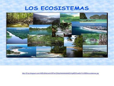 MI ENTORNO: UN ECOSISTEMA VIVIENTE: TIPOS DE ECOSISTEMAS