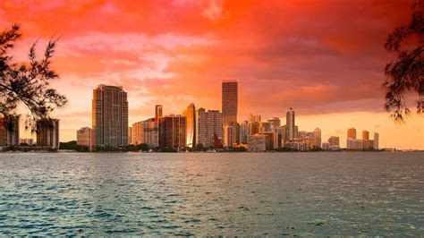 Miami Vacations   Vacation Packages & Trips 2020   Expedia