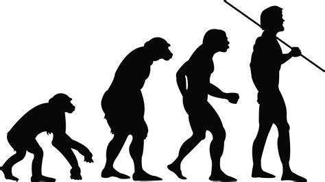Microevolución y macroevolución: definición y diferencias ...