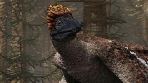 Microraptor   Flying Dinosaur   Planet Dinosaur   BBC ...