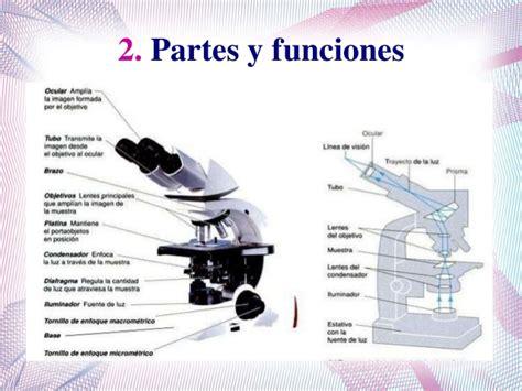 Microscopio óptico convencional.