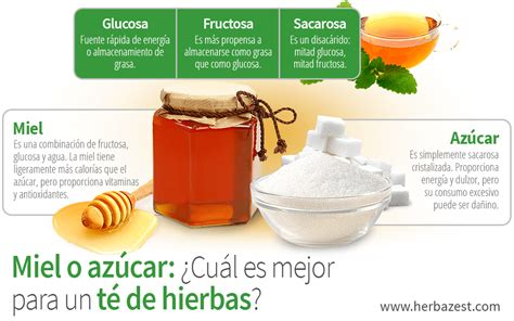 Miel versus azúcar: ¿Qué es mejor para un té de hierbas ...