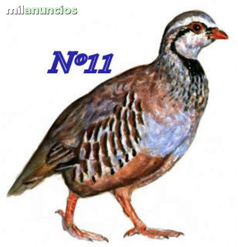 MIL ANUNCIOS.COM   Pegatinas de aves de caza