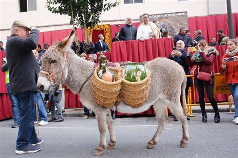 Miles de valencianos bendicen a sus animales en más de 100 ...