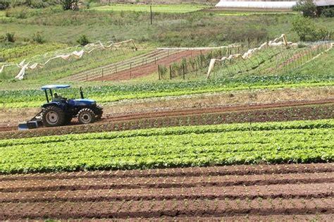 Ministério da Agricultura garante apoio aos compromissos ...