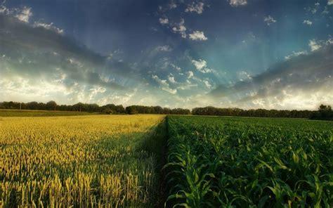 Ministério da Agricultura, Pecuária e Abastecimento ...