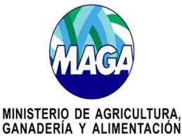 Ministerio de Agricultura, Ganadería y Alimentación ...
