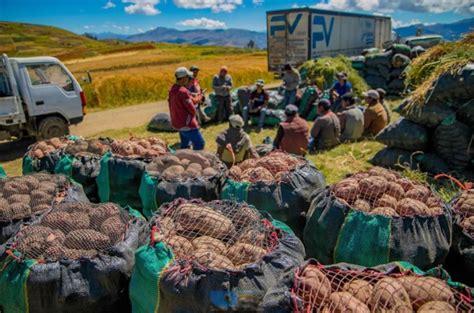 Ministerio de Agricultura y Riego promueve mayor consumo ...