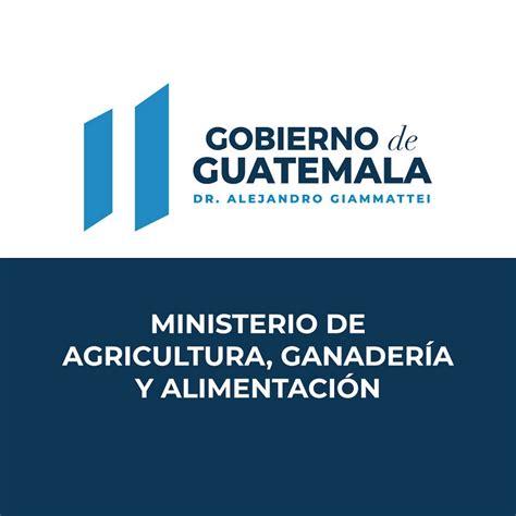 MINISTERIO DE AGRICULTURA   YouTube