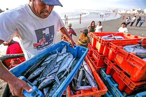 Ministerio de la Producción suspendió pesca de bonito en ...