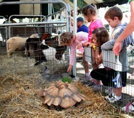 Mobile Petting Zoo for Party Entertainment Events   VA, WV ...