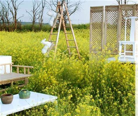 Mobiliario de jardin barato para exteriores e interiores ...