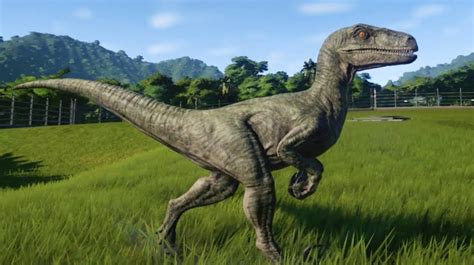 Mods are asleep. Here is a Velociraptor. For the next 24 ...