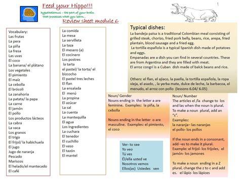 MODULE 6   Spanish 1 Study Guide
