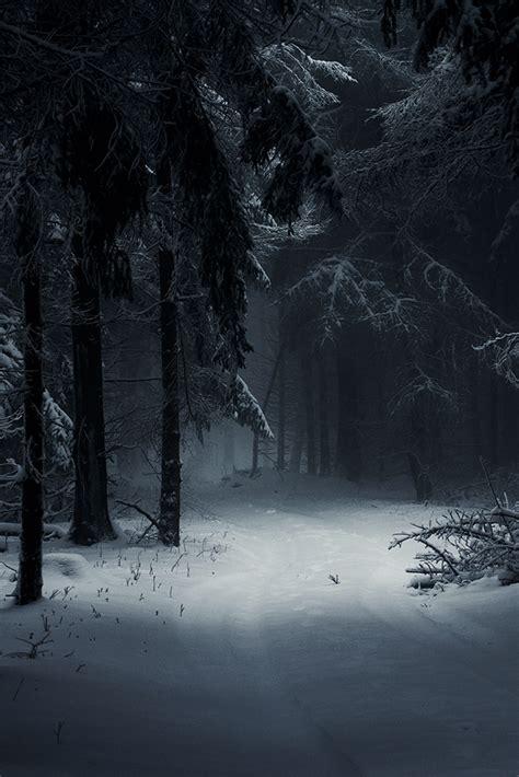 Moika Palace   classyxsexxy: Sleeping Forest   cXs
