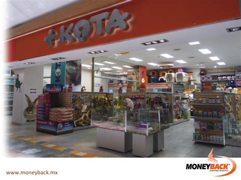 MONEYBACK MEXICO. MASKOTA is the leading pet store chain ...
