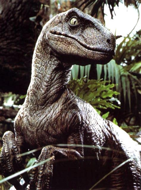 Monster Madnezz: Jurassic Park Velociraptor  Movie Monster